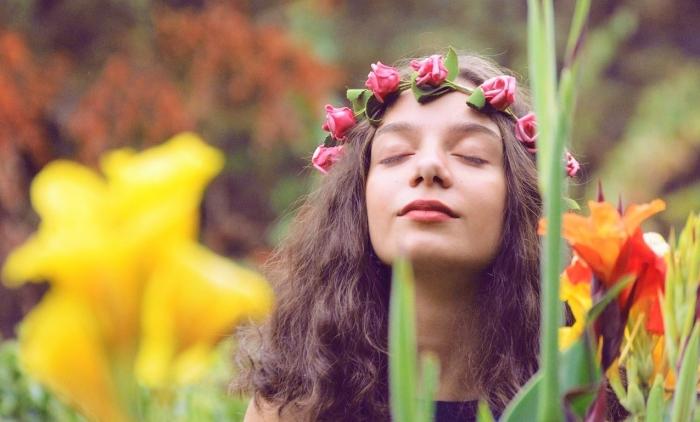 flowers-2806675_1920 bb