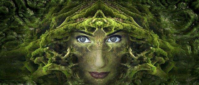 Image by Stefan Keller from Pixabay - 9