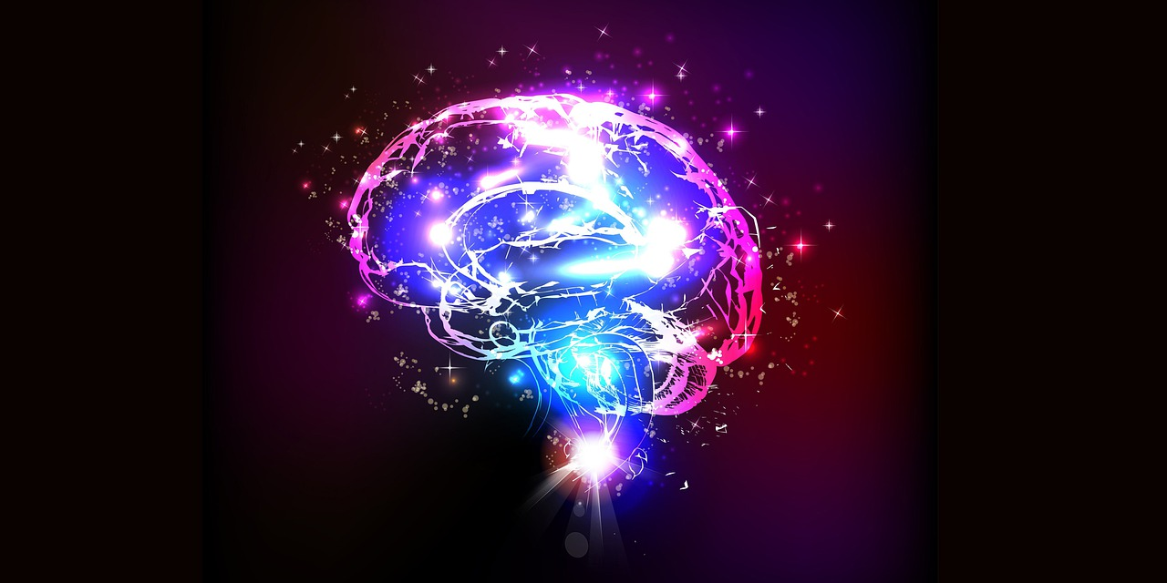 brain-5966091_1280 Image by Ermal Tahiri from Pixabay